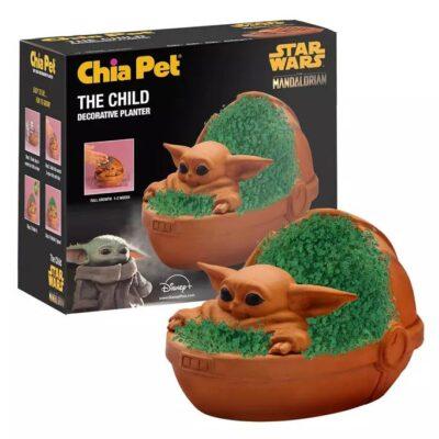 The Child Chia Pet